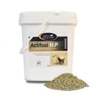 Actifoal