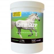 Laminaze NAF