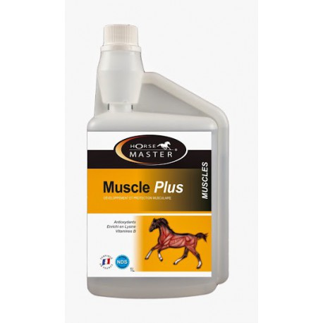 MUSCLE PLUS