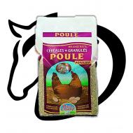 Mélange Céréales Poule Pondeuse